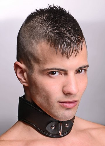 Straight Up Padded Locking Posture Collar Beginner Bondage, Bondage Gear, Collars